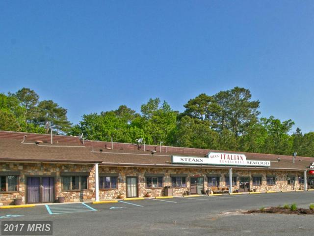 12445 Ocean Gateway #123456, Ocean City, MD 21842 (#WO10012130) :: LoCoMusings