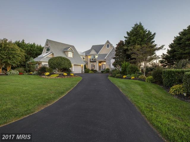 12312 Southhampton Drive, Bishopville, MD 21813 (MLS #WO10075503) :: RE/MAX Coast and Country