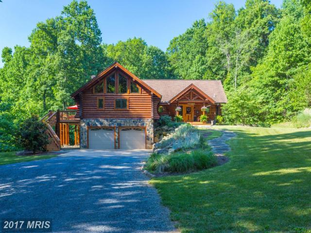 1133 Mosby Springs Road, Linden, VA 22642 (#WR10000557) :: Pearson Smith Realty