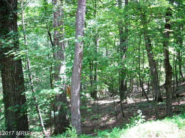 Hillandale Road, Front Royal, VA 22630 (#WR10000860) :: Pearson Smith Realty