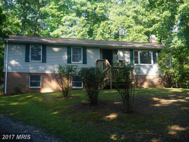 451 Lakeside Drive, Front Royal, VA 22630 (#WR10007213) :: LoCoMusings