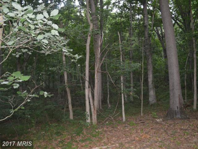 0 Wilderness Road, Linden, VA 22642 (#WR10007781) :: Pearson Smith Realty