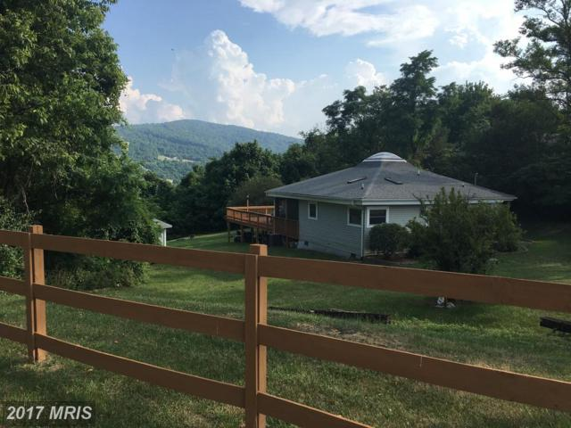 398 Granny Smith Road, Linden, VA 22642 (#WR10010176) :: Pearson Smith Realty