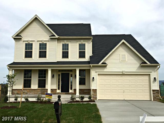 58 Divot Court, Front Royal, VA 22630 (#WR10013769) :: Pearson Smith Realty