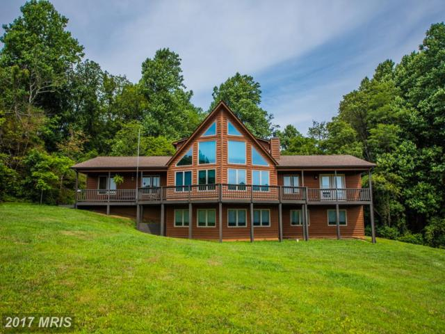 71 Castle Court, Linden, VA 22642 (#WR10016951) :: Pearson Smith Realty
