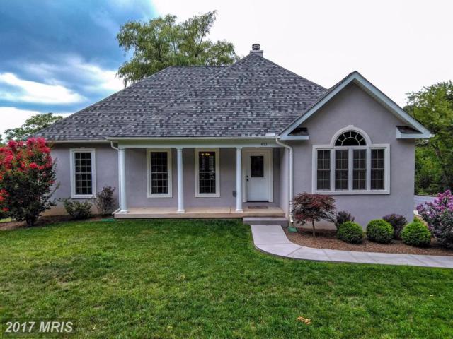 453 King David Drive, Linden, VA 22642 (#WR10023319) :: Pearson Smith Realty