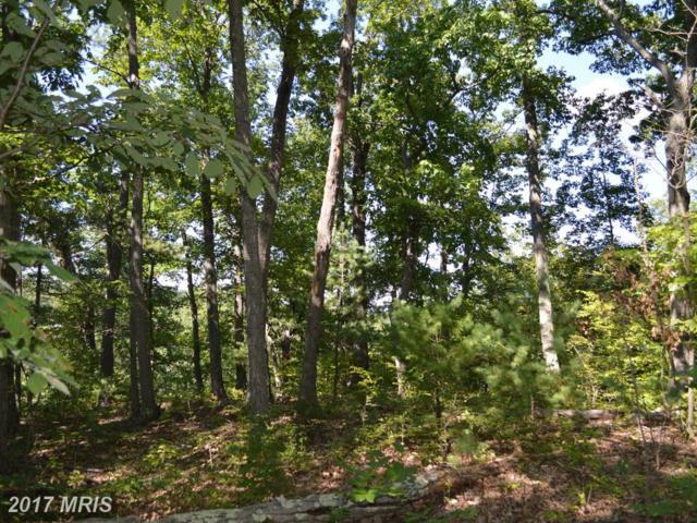 0 Cedar Mountain Lane, Front Royal, VA 22630 (#WR10027950) :: Pearson Smith Realty