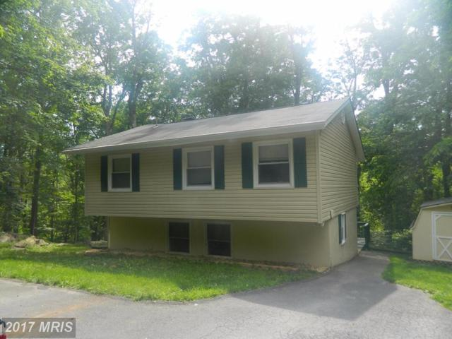 54 Spruce Road, Front Royal, VA 22630 (#WR10034977) :: Pearson Smith Realty