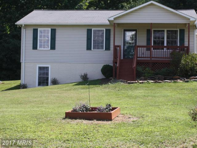 126 Cliffside Road, Linden, VA 22642 (#WR10039739) :: Pearson Smith Realty