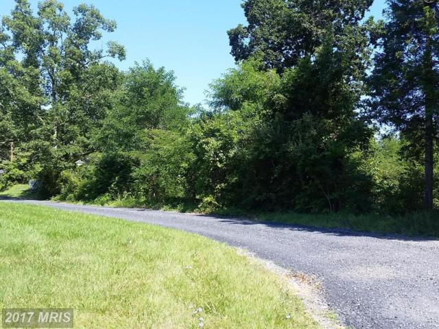 Strasburg Road, Front Royal, VA 22630 (#WR10040408) :: LoCoMusings