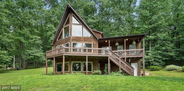 718 Freezeland Road, Linden, VA 22642 (#WR10044619) :: Pearson Smith Realty