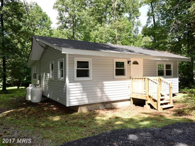4165 Freezeland Road, Linden, VA 22642 (#WR10044816) :: Pearson Smith Realty