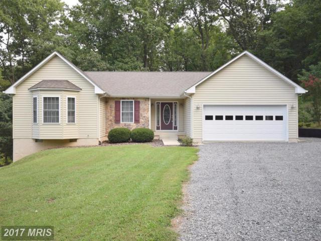 493 Gimlet Ridge Road, Bentonville, VA 22610 (#WR10050367) :: Pearson Smith Realty