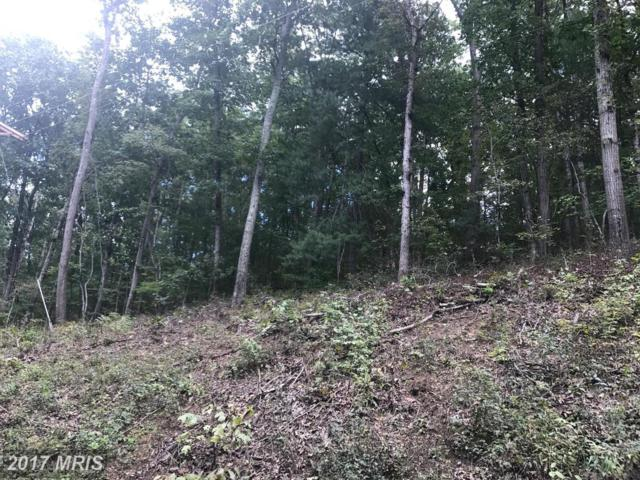 LOT 671 Old Oak Lane, Front Royal, VA 22630 (#WR10050862) :: Pearson Smith Realty