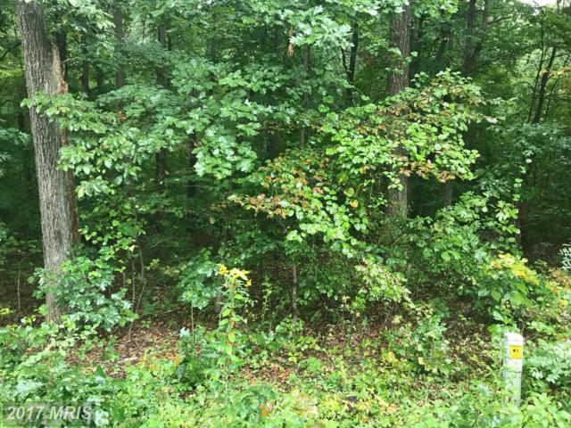 LOT 434 Vaught Drive, Front Royal, VA 22630 (#WR10050871) :: Pearson Smith Realty