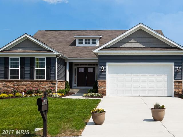 110 Flagstick Court, Front Royal, VA 22630 (#WR10055040) :: LoCoMusings