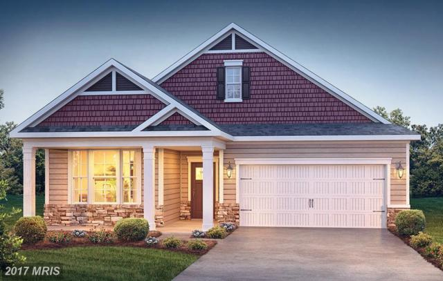 80 Putter Court, Front Royal, VA 22630 (#WR10056042) :: Pearson Smith Realty