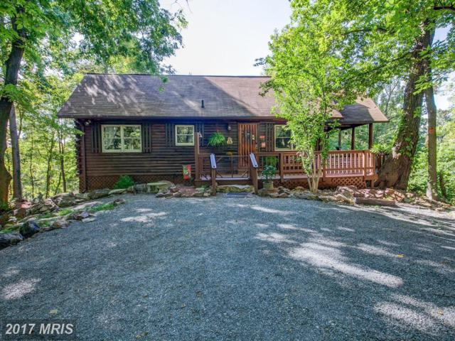 97 River Overlook Road, Front Royal, VA 22630 (#WR10060270) :: Pearson Smith Realty