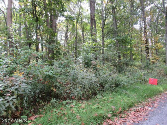 Lot 13 Hightop, Linden, VA 22642 (#WR10063687) :: Pearson Smith Realty