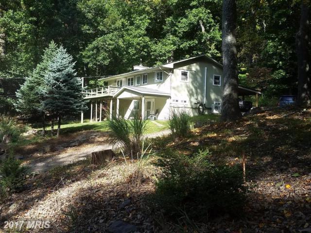 1091 Massanutten Mountain Drive, Front Royal, VA 22630 (#WR10072806) :: Pearson Smith Realty
