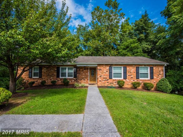 327 Amherst Drive, Front Royal, VA 22630 (#WR10072926) :: LoCoMusings