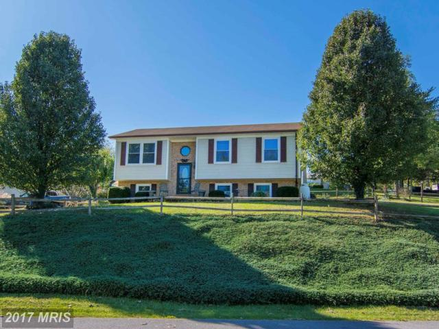 328 18TH Street, Front Royal, VA 22630 (#WR10085154) :: Pearson Smith Realty