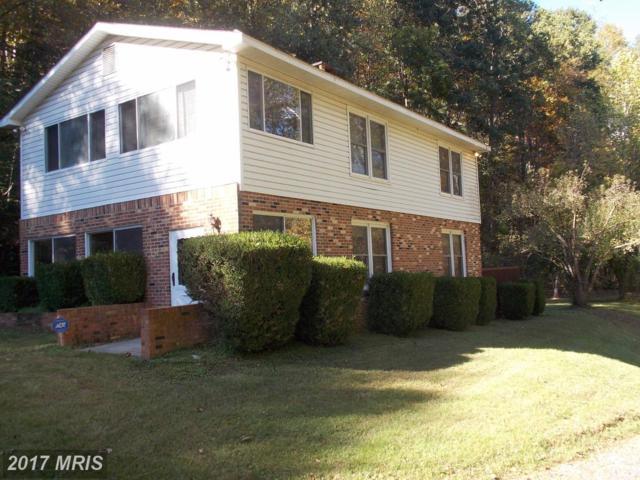 940 Dismal Hollow Road, Front Royal, VA 22630 (#WR10087644) :: Colgan Real Estate