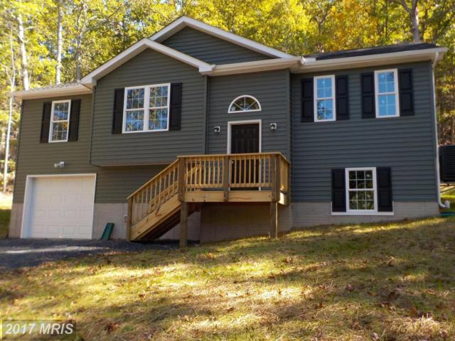 4980 Howellsville Road, Front Royal, VA 22630 (#WR10100673) :: Pearson Smith Realty