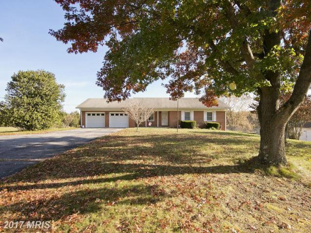 865 Reliance Road, Middletown, VA 22645 (#WR10103899) :: The Nemerow Team