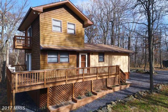 4967 Blue Mountain Road, Linden, VA 22642 (#WR10105469) :: The Nemerow Team