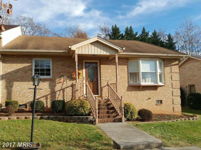 614 Mount View Street, Front Royal, VA 22630 (#WR10106367) :: The Nemerow Team