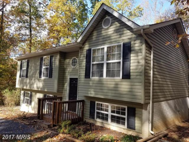 78 Brook View Road, Front Royal, VA 22630 (#WR10106735) :: Pearson Smith Realty