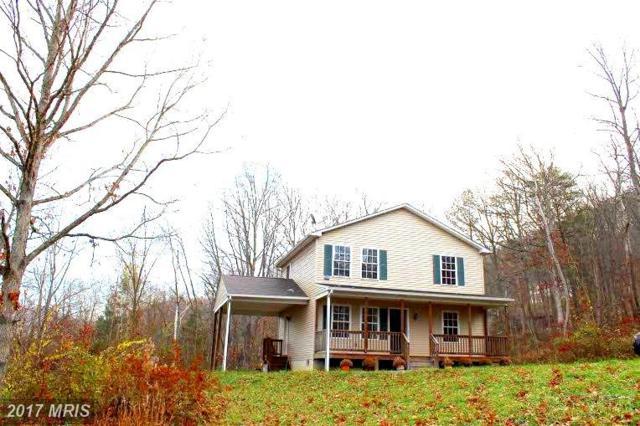 73 Walker Farm Drive, Front Royal, VA 22630 (#WR10122153) :: Pearson Smith Realty