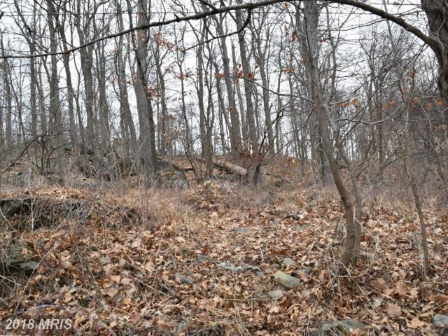 5455-LOT Luchase Road, Linden, VA 22642 (#WR10132548) :: Pearson Smith Realty