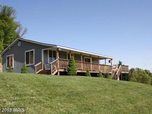188 Valley Overlook Court, Strasburg, VA 22657 (#WR10135667) :: Keller Williams Pat Hiban Real Estate Group