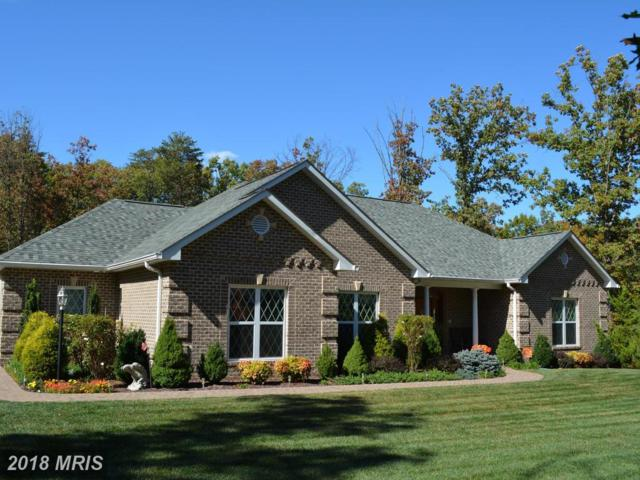127 Thomas Drive, Middletown, VA 22645 (#WR10137677) :: Pearson Smith Realty