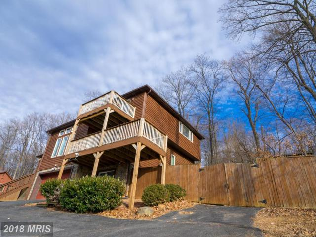 1153 Massanutten Mountain Drive, Front Royal, VA 22630 (#WR10144291) :: The Bob & Ronna Group