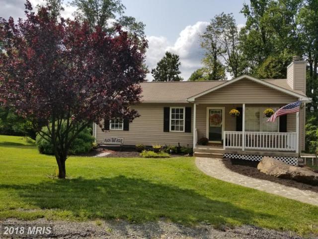 185 Mcdonalds Farm Road, Linden, VA 22642 (#WR10158647) :: Great Falls Great Homes