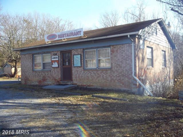 867 Strasburg Road, Front Royal, VA 22630 (#WR10160634) :: The Gus Anthony Team