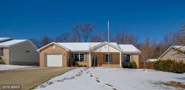 1119 Ashby Street, Front Royal, VA 22630 (#WR10182270) :: Keller Williams Pat Hiban Real Estate Group