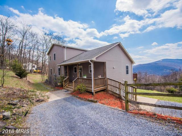 964 Granny Smith Road, Linden, VA 22642 (#WR10206158) :: RE/MAX Gateway