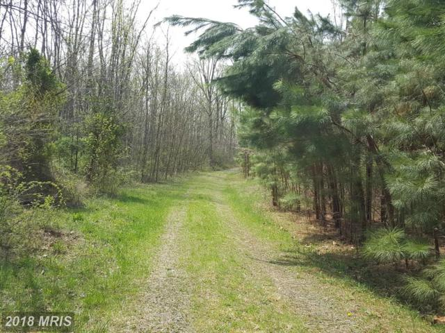 Rainbow Way, Front Royal, VA 22630 (#WR10217356) :: Browning Homes Group