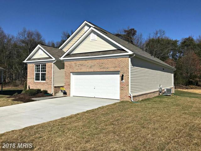 46 Hickory Shaft Court, Front Royal, VA 22630 (#WR10233097) :: The Gus Anthony Team