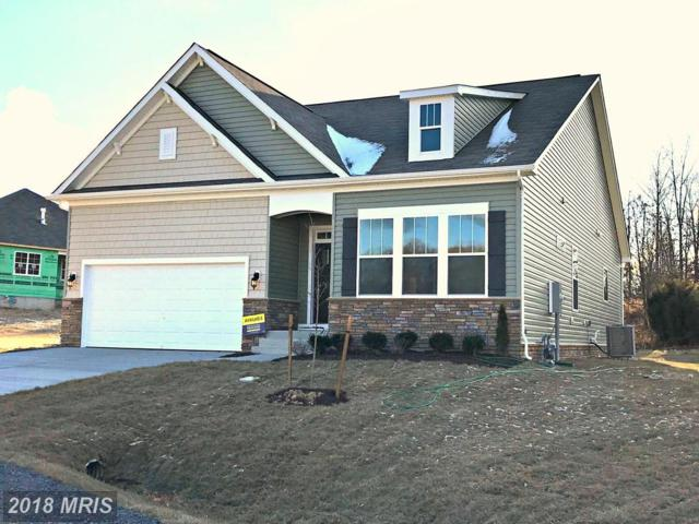 41 Hickory Shaft Court, Front Royal, VA 22630 (#WR10233101) :: The Gus Anthony Team