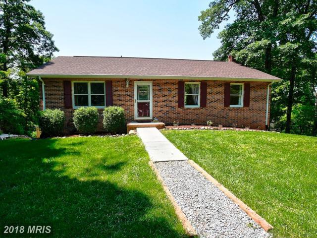 759 Highridge Road, Front Royal, VA 22630 (#WR10252211) :: The Nemerow Team