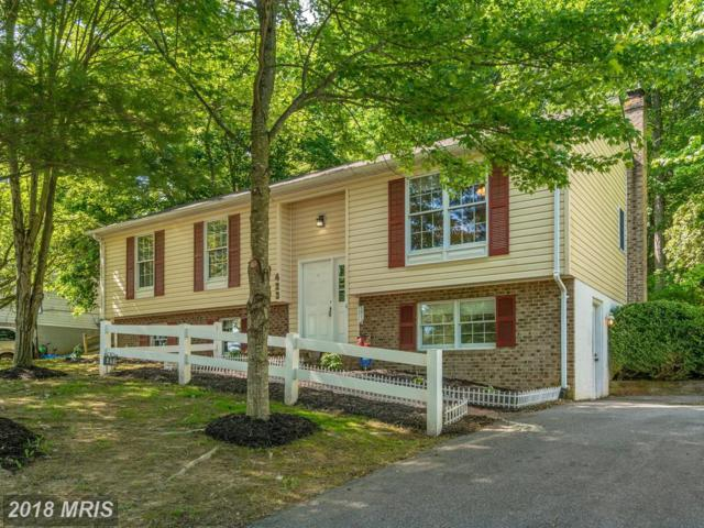423 Duck Street, Front Royal, VA 22630 (#WR10252491) :: The Nemerow Team