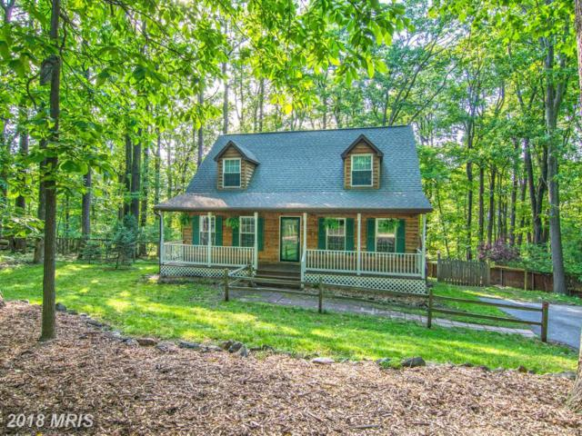 103 Chestnut Trail Road, Front Royal, VA 22630 (#WR10262644) :: The Gus Anthony Team