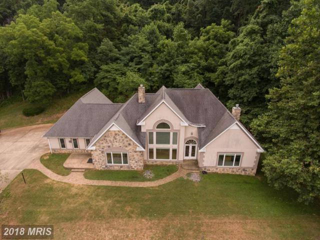5462 Browntown Road, Front Royal, VA 22630 (#WR10301671) :: The Nemerow Team