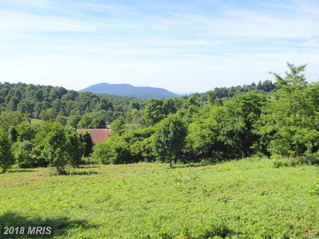 Freezeland View Lane, Linden, VA 22642 (#WR10307398) :: The Maryland Group of Long & Foster