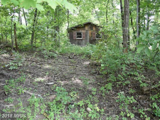 383-LOT Pine Ridge Drive, Front Royal, VA 22630 (#WR10319417) :: Bob Lucido Team of Keller Williams Integrity
